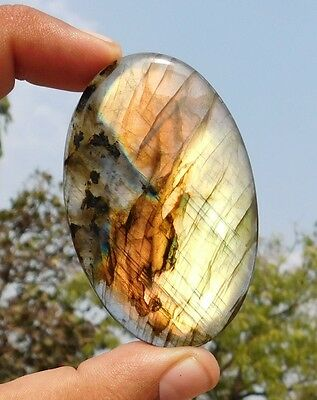 150.6 Cts ?Beautiful? Natural Flashing Labradorite 69X44X6 mm Loose Cabochon