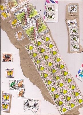 70 KENYA stamps on paper.