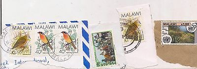 7 MALAWI stamps on paper.
