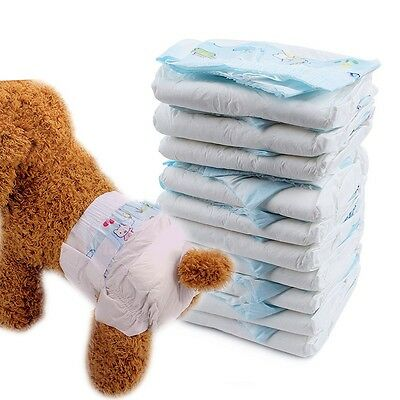 Pet Diapers Puppy Disposable Tighten Nappy Female Dog Physiological Briefs 10PCS