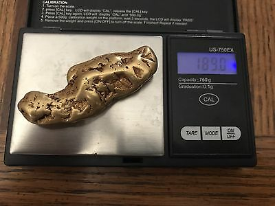 Two Large Gold Nuggets 189.0 Grams And 163 Grams