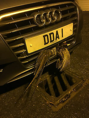 Private Car Number Plate 'DDA 1'