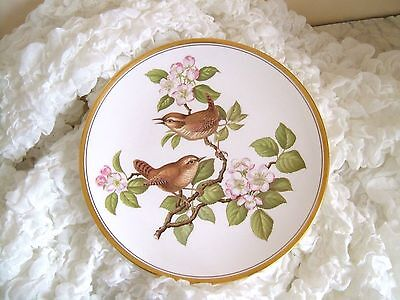 SPODE Garden Bird's Series Fine Bone China Collectors Plate Wren No.2