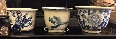 Chinese Ming Chenghua Style Blue and White Flower Plant Porcelain Pots Lot of 3