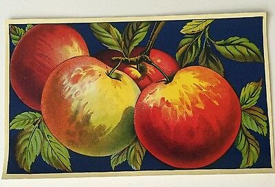 Early 1900's APPLE BOX CRATE PAPER LABEL Lithograph Beautiful!