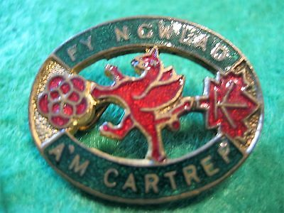 Rare WWII W.I. Welsh for Home and Country badge