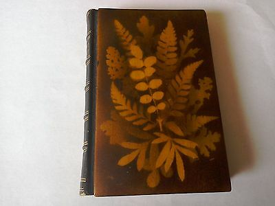 """Mauchline Fernware Book,Title """"Forget Me Not"""" Book ."""
