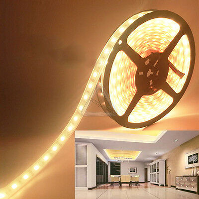 5M LED Light Strips 5050 Warm White 300 SMD Waterproof lamp Party decoration 12V
