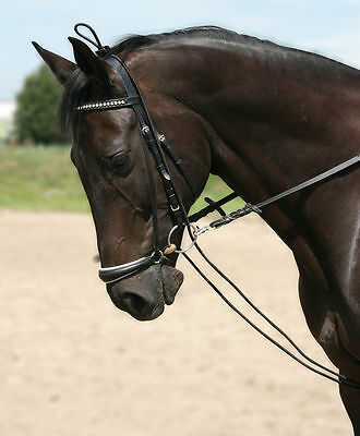 PFIFF Horse & Pony Training Reins Rubber Elasticated Chambon Training Aid Black