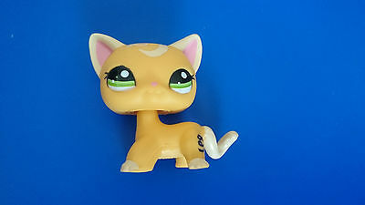 Rare Little Petshop / Lps / Cat / Chat Europeen Short Hair Kitty / Lps 2194