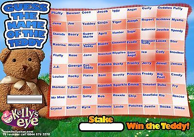GUESS THE NAME OF THE TEDDY A3 FUNDRAISING MATCH & WIN CARD CHARITY EVENT 90 Sqr