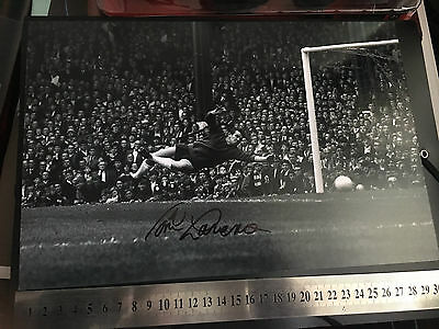 """Liverpool FC Signed Tommy Lawrence Goalkeeper 12""""x8"""" Brand New"""