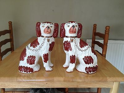 Vintage Pair of Staffordshire Ware Kent Dogs