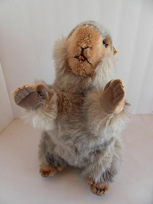 Steiff groundhog life-size  button flag made in Germany 2113