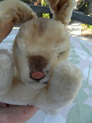 Steiff  rabbit mohair sleeping button   made in Germany 1378