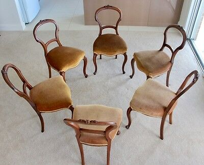 set 6 Antique Victorian Walnut Balloon Backed Dining Chairs