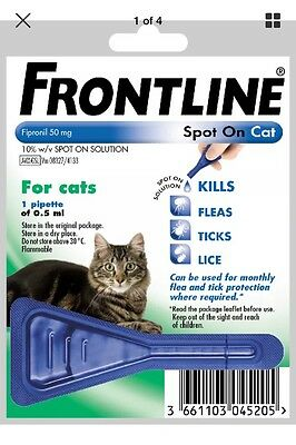 Front Line Cat Spot On Flea Treatment One Pipette AVM GSL