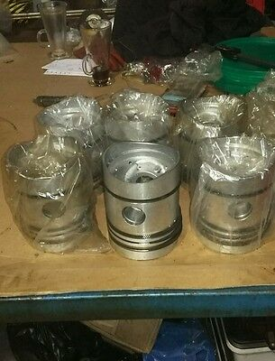 Set of 6 Leyland 400 pistons with rings