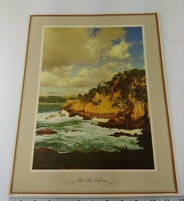 VTG Chevron Advertising Travel Prints Scenic Photos Point Lobos Monterey Sleeve