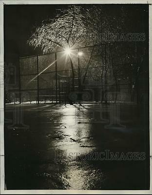 1965 Press Photo Street Lights Reflecting Icy Trees, Ridgewood, Queens, New York