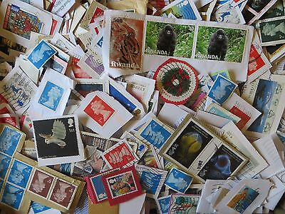 1.5kg Box of GB and World Wide stamps from Charity Kiloware (#3)