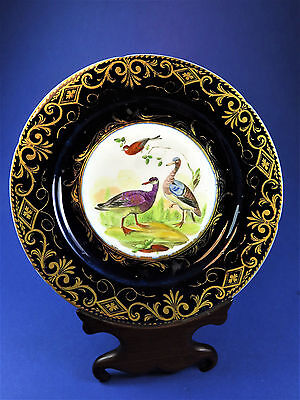 Antique Early 19th Century Coalport Ornithological Dessert Plate Egyptian Geese