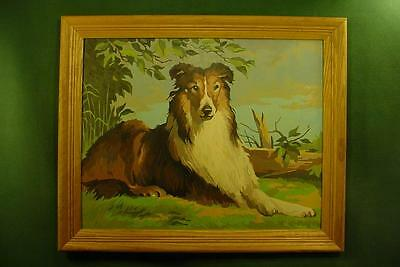 Vintage Paint By Number Painting Pbn ................ Wonderful Collie Dog