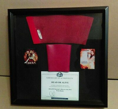 DOA Dead or Alive - Screen Worn Used Wardrobe Prop - COA - Devon Aoki - Sin City