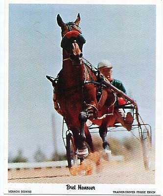 Bret Hanover Sets Harness Racing Record 1:54 Flat 9/2/66. Photo,program,ticket,