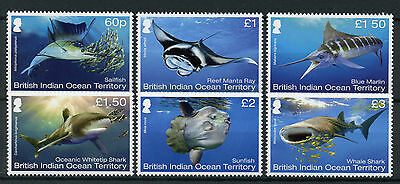 BIOT Br Indian Ocean Terr 2017 MNH Mega Fauna 6v Set Sharks Fish Marlin Stamps