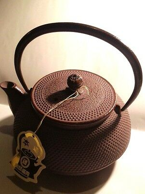 **NOT USED**Japanese Nanbu Tekki  Iron Tea Kettle 600mL Tetsubin teapot  #99