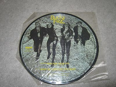 "10"" vinyl single,Bucks Fizz ,run for your life ,shot me , picture disc"