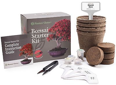 Planters' Choice Bonsai Starter Kit - Complete Kit to Easily Grow 4 Bonsai Trees