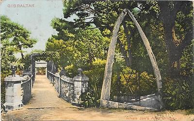 1024 Gibraltar Whale Jaws Arch Bridge Posted 1910 Stamp Missing