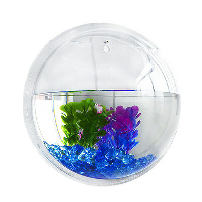 Wall Mounted Acrylic Fish Tank Bowl Plant Goldfish Hanger Home Decoration