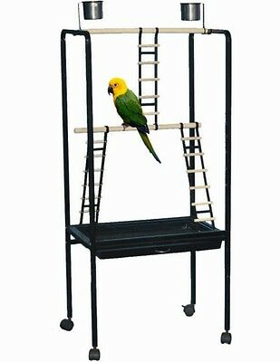 African Grey and Parrot Playstand