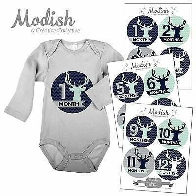 12 Monthly Baby Stickers, Boy, Deer, Antlers, Baby Belly Stickers, Baby Month St