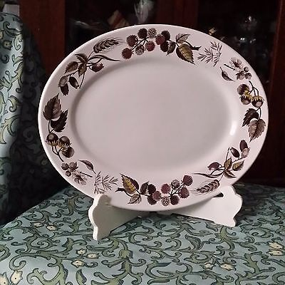 WARWICK by Ridgway Staffordshire Leafs & Berries Oval Stoneware Serving Platter