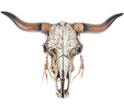 """Realistic Steer Bull Cow Feather Skull Wall Mount Rustic Western 18""""x14"""" New"""