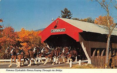 Postcard NH Jackson Covered Bridge White Mountains Clydesdale New Hampshire PC