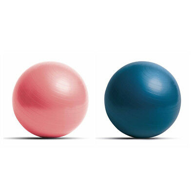 Exercise Gym Swiss Therapy Balls - Balance - Core - Strength - Yoga - Fitness
