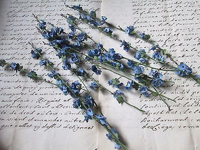 20 old vintage flowers twig forget my not from old stock/France
