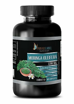 Organic Moringa seeds - MORINGA OLEIFERA EXTRACT - fat burner powder - 1 Bottle