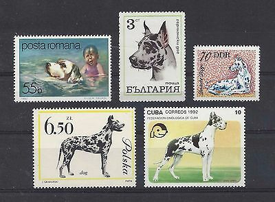 Dog Art Postage Stamp Collection HARLEQUIN GREAT DANE 5 Different Head Body MNH