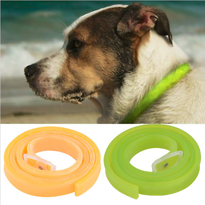 Arrival Dog Cat Repel Tick Flea Quick Kill Remover Pet Protection Neck Collar