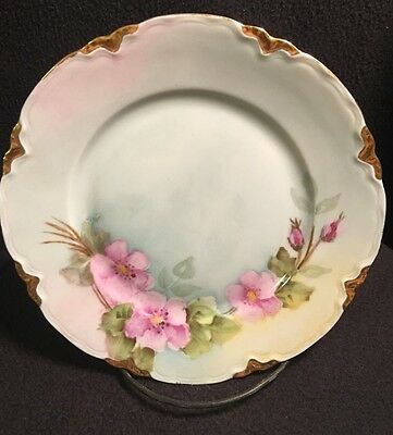 Vintage Pink Floral Hand Painted Hutschenreuther Plate, Bavaria Germany