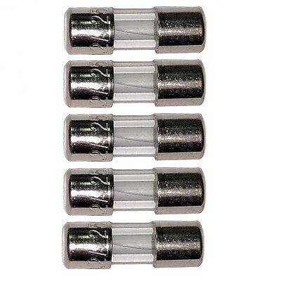 Set of 5 -  3.6x10mm Glass Micro Fuse 125/250v (Common Christmas Light Fuse)