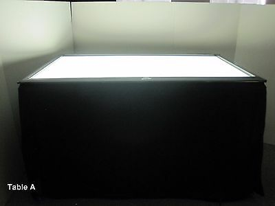 Drawing Tracing Photography Drafting Graphic Commercial Light Table w/ Wheels