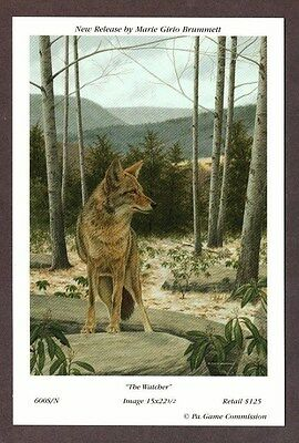 RARE NEW Pa Pennsylvania Game Commission WTFW 2001 Coyote Lithograph Print Card