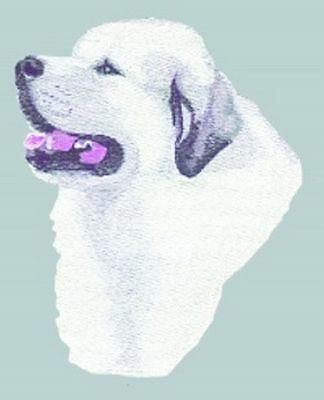 "Great Pyrenees Dog, Embroidered Patch 5.6"" x 6.5"""
